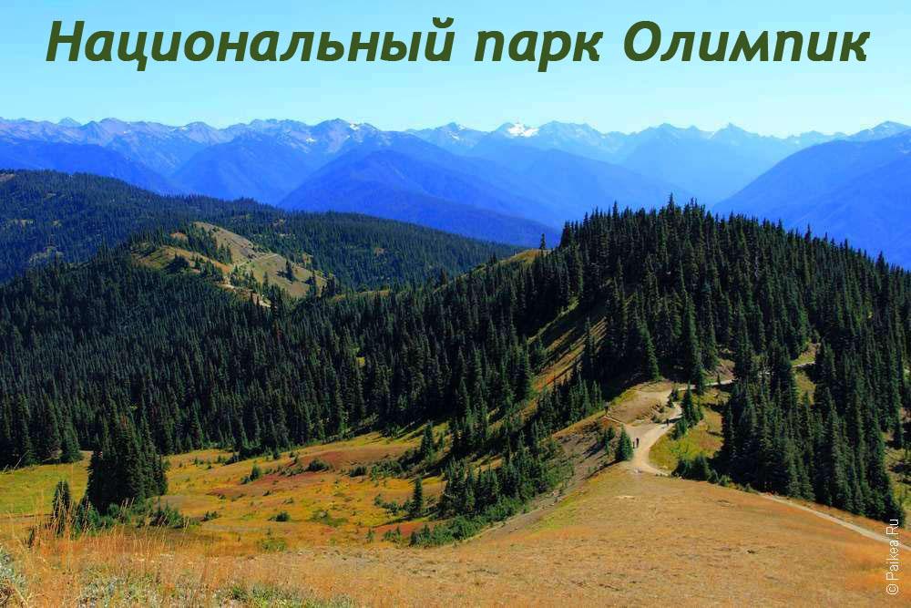 Национальный парк Олимпик