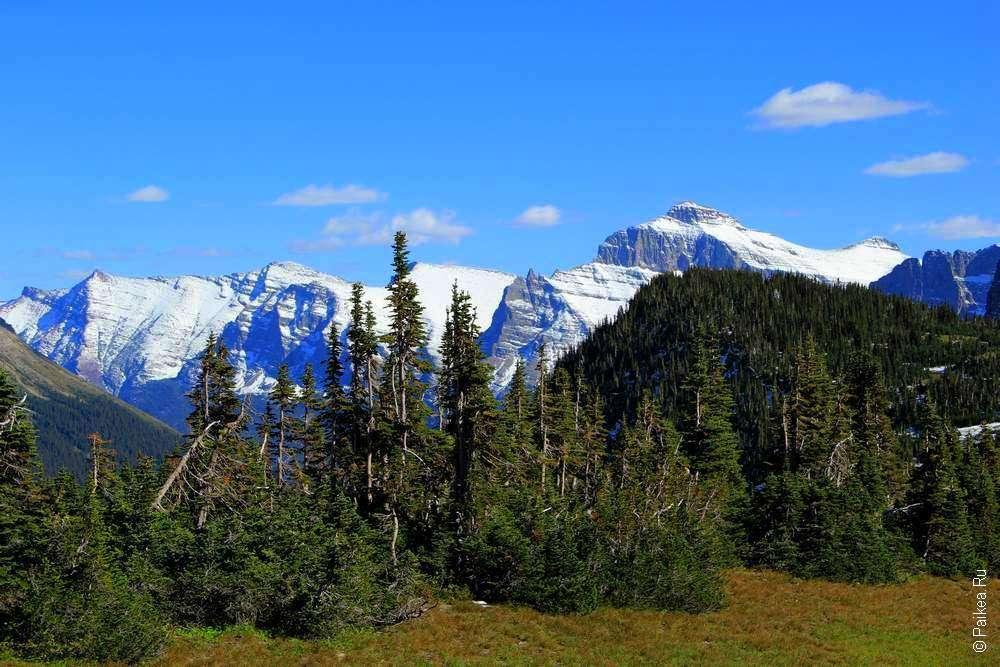 Пейзаж на горном перевале Logan Pass