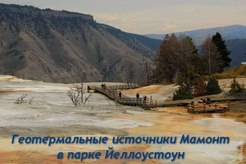Геотермальные источники Мамонт