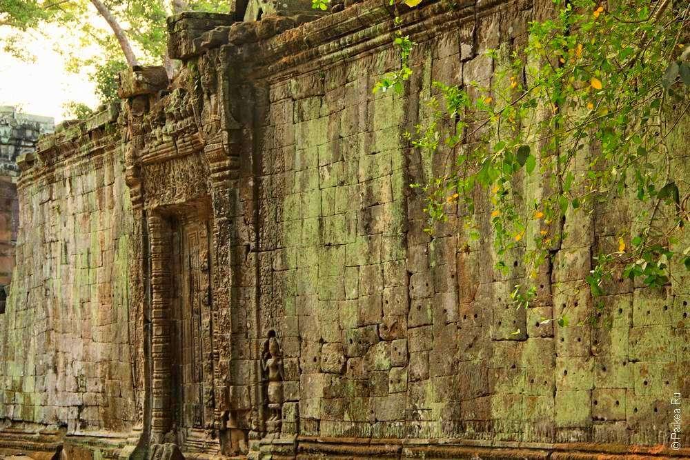 Стена Та Пром, Ангкор, Камбоджа