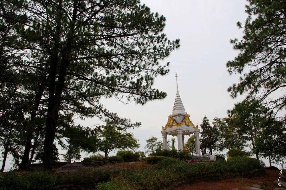 Пагода в сосновом лесу