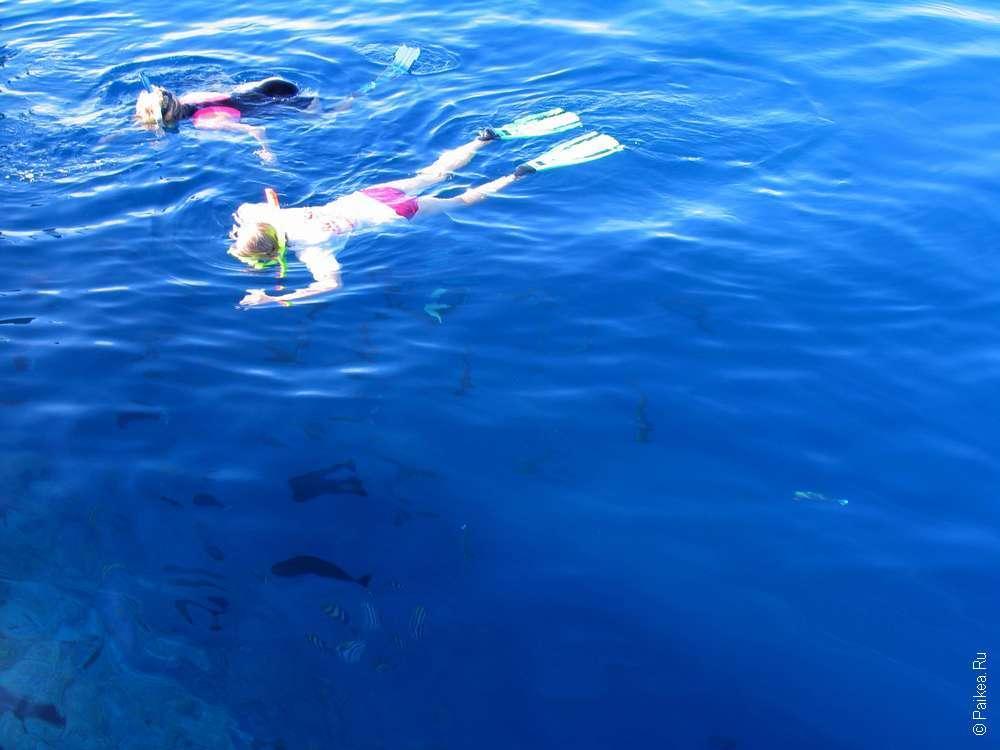 Снорклинг на Мальдивах