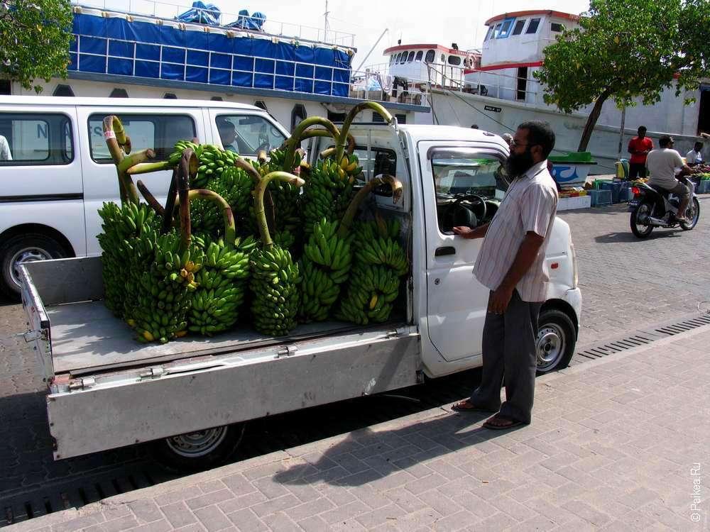Программы для волонтеров на Мальдивах