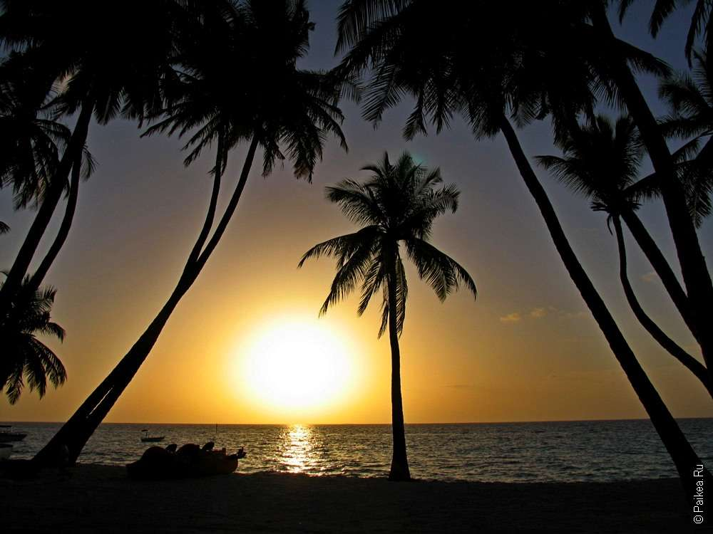 Отдых на Мальдивах туры
