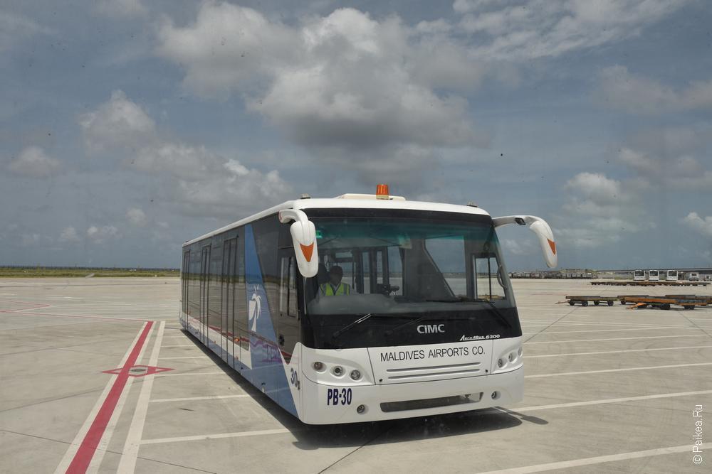 автобус в аэропорту мале