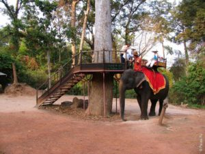 Поездка на слоне в Ангкор