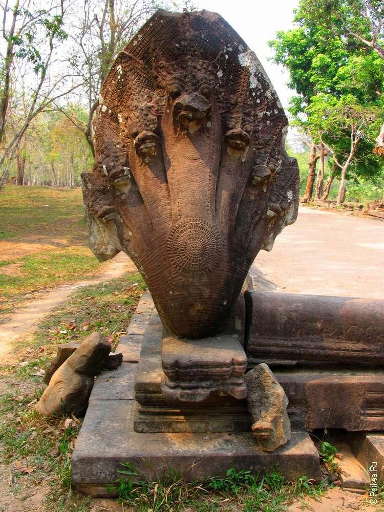 Семиголовая нага в Бенг Мелия Камбоджа