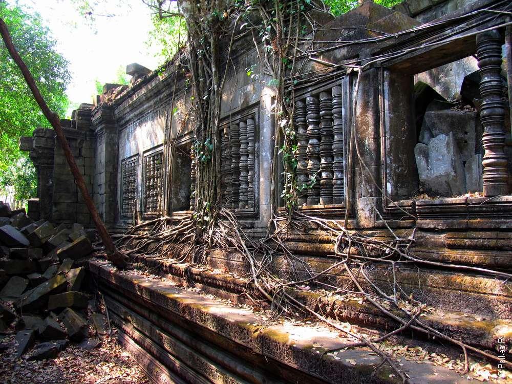 Бенг Милия Камбоджа