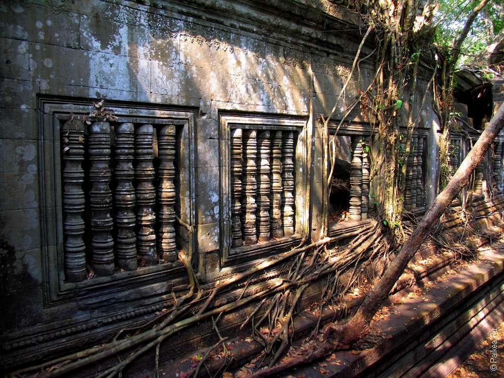 Храм Бенг Мелиа, Ангкор, Камбоджа