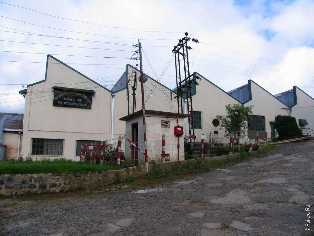 Фабрика цейлонского чая в Нувара Элии