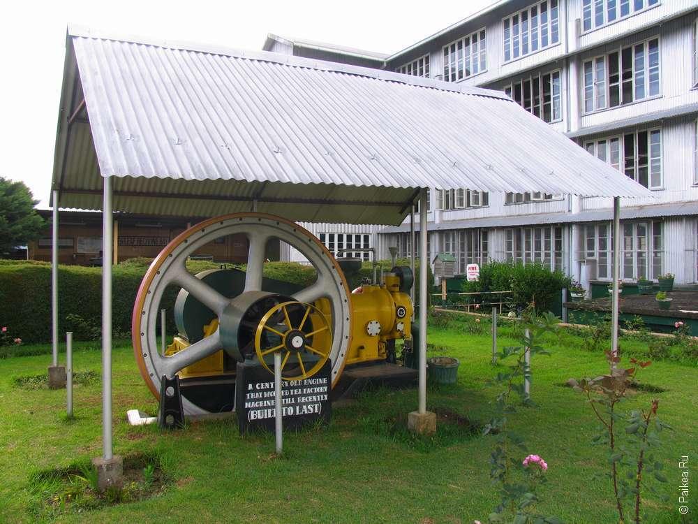 Четырехэтажная чайная фабрика