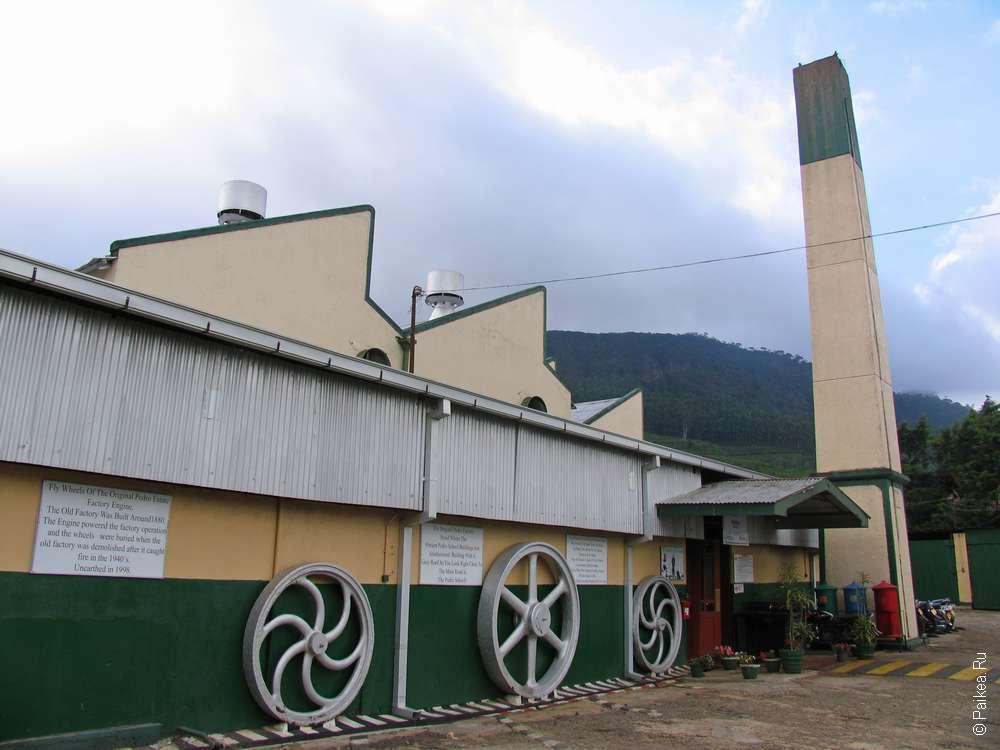 Чайная фабрика Педро в Нувара Элии