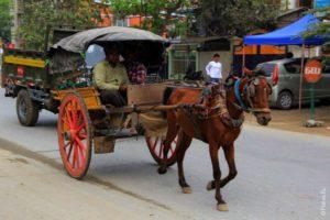 Мандалай Мьянма