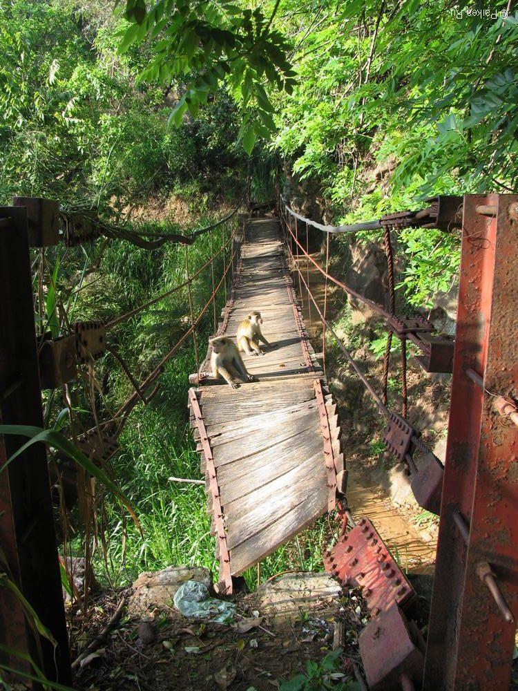 Мост в Шри-Ланке
