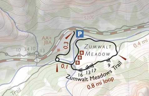 Схема Трейлов в долине Цумвальт