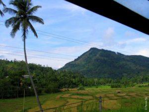 Вот так начинается путешествие на поезде из Канди вШри-Ланке