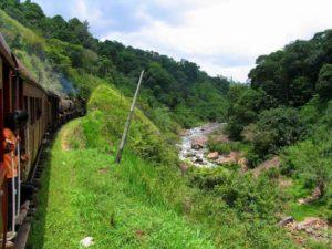 Вид из окна вагона поезда в Шри-Ланке