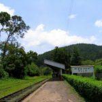 Поезд Шри Ланка