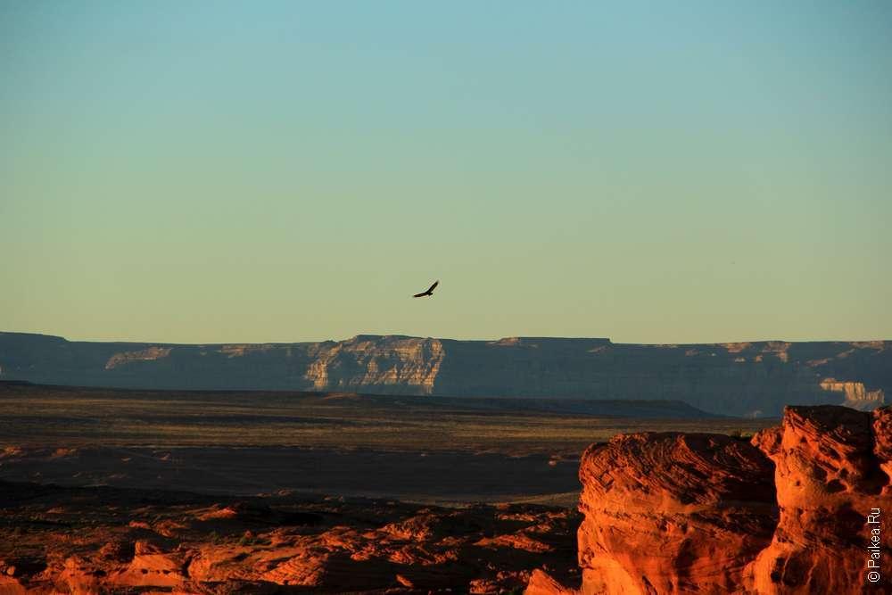 Парящий орел в США, Каньон Подкова