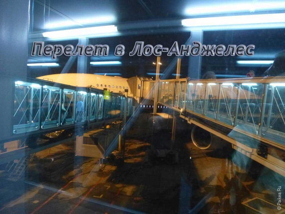 Билеты на самолет владикавказ москва авиакомпания победа купить