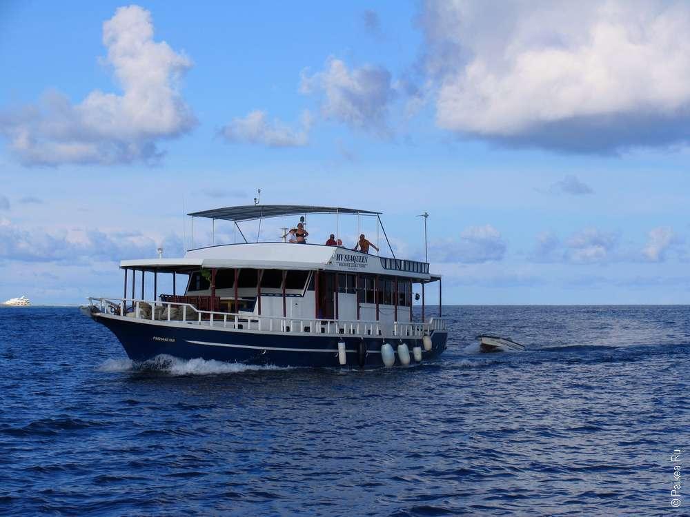 Мальдивы рифы снорклинг