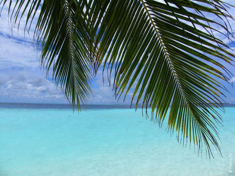 Отдых на Мальдивах когда лучше ехать