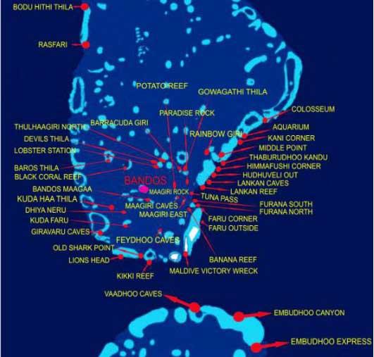 Бандос Мальдивы дайвинг