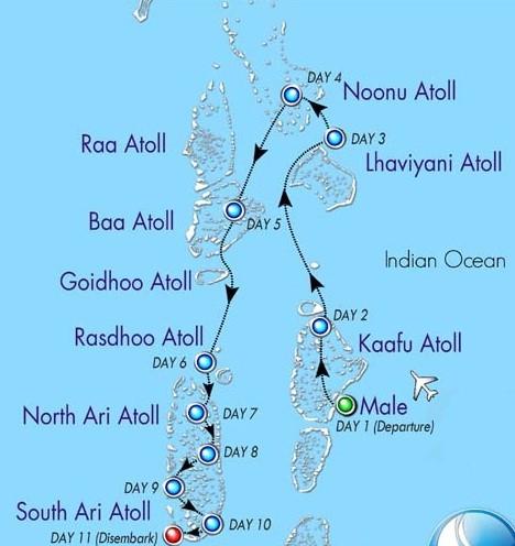 Подводное сафари на Мальдивах