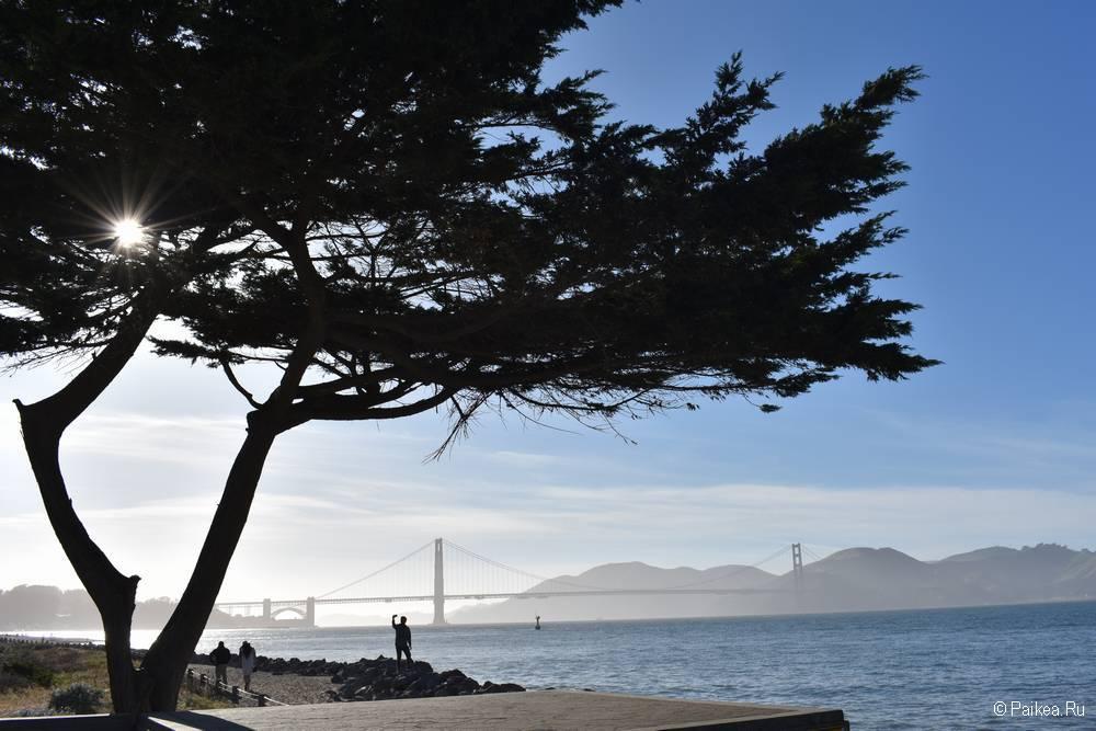 Мост Золотые Ворота в Сан-Франциско Крисси Филд