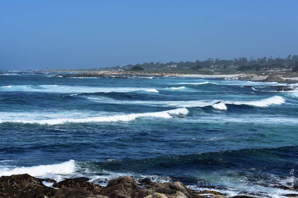 тихий океан в пасифик гроув