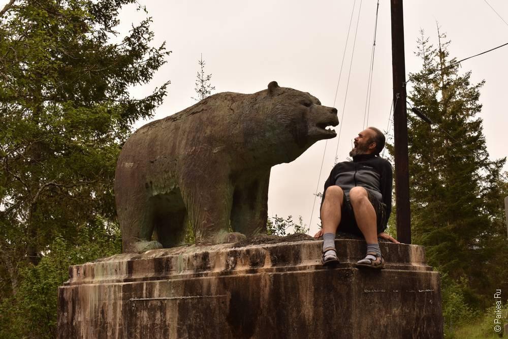 Медведь - символ Калифорнии