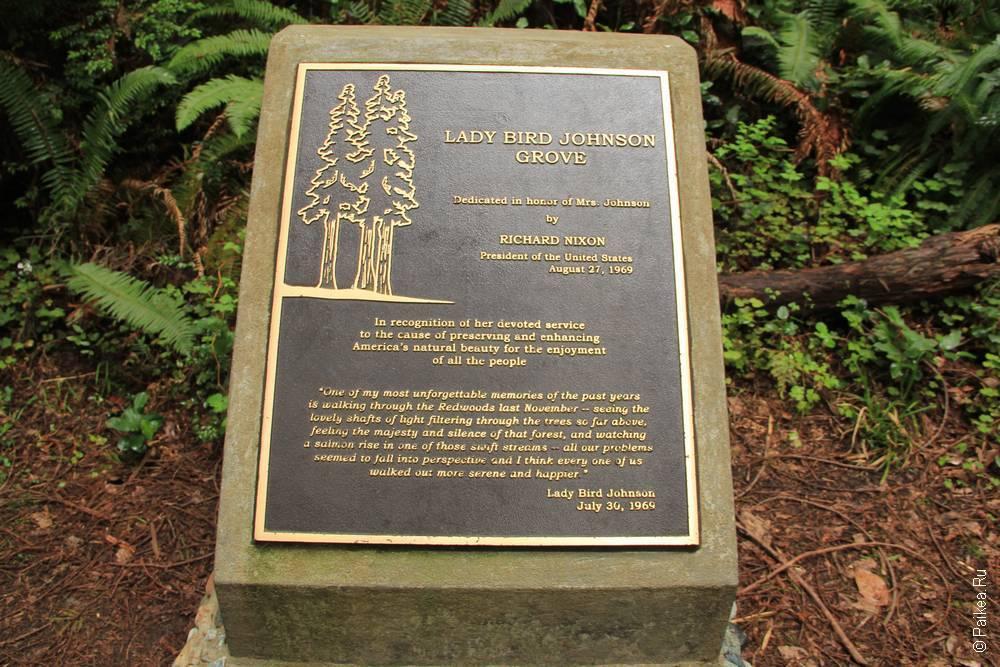 lady bird johnson grove