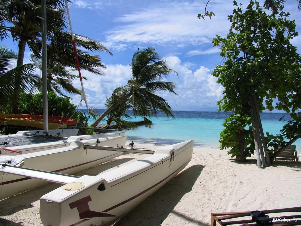 Мальдивы или Шри-Ланка