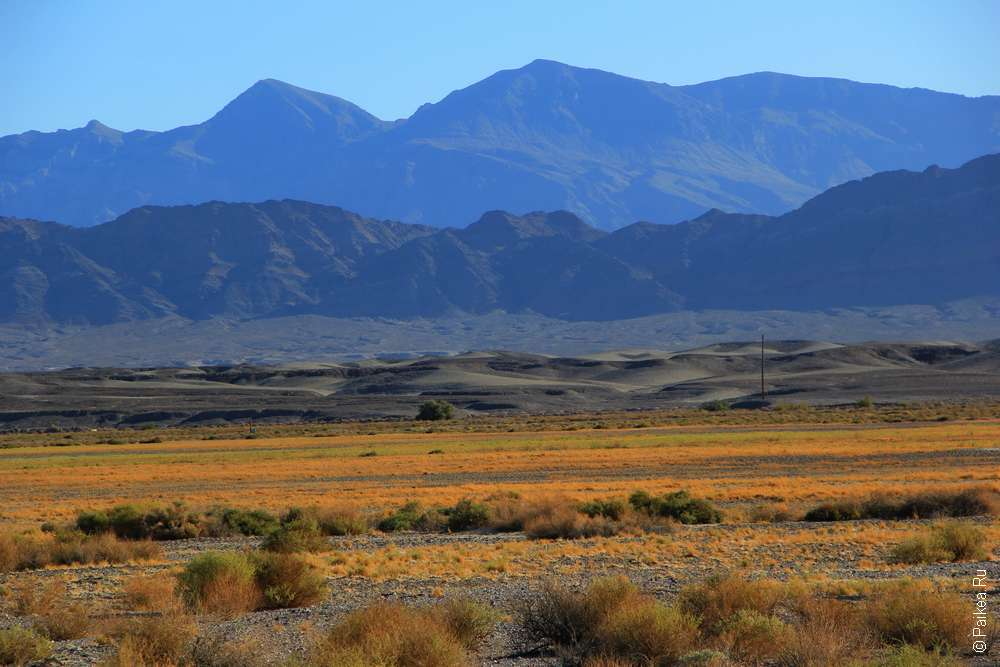 Пустыня Мохаве США