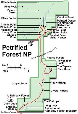 Окаменевший лес (Петрифайд Форест) что посмотреть