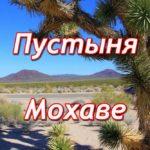 Пустыня Мохаве