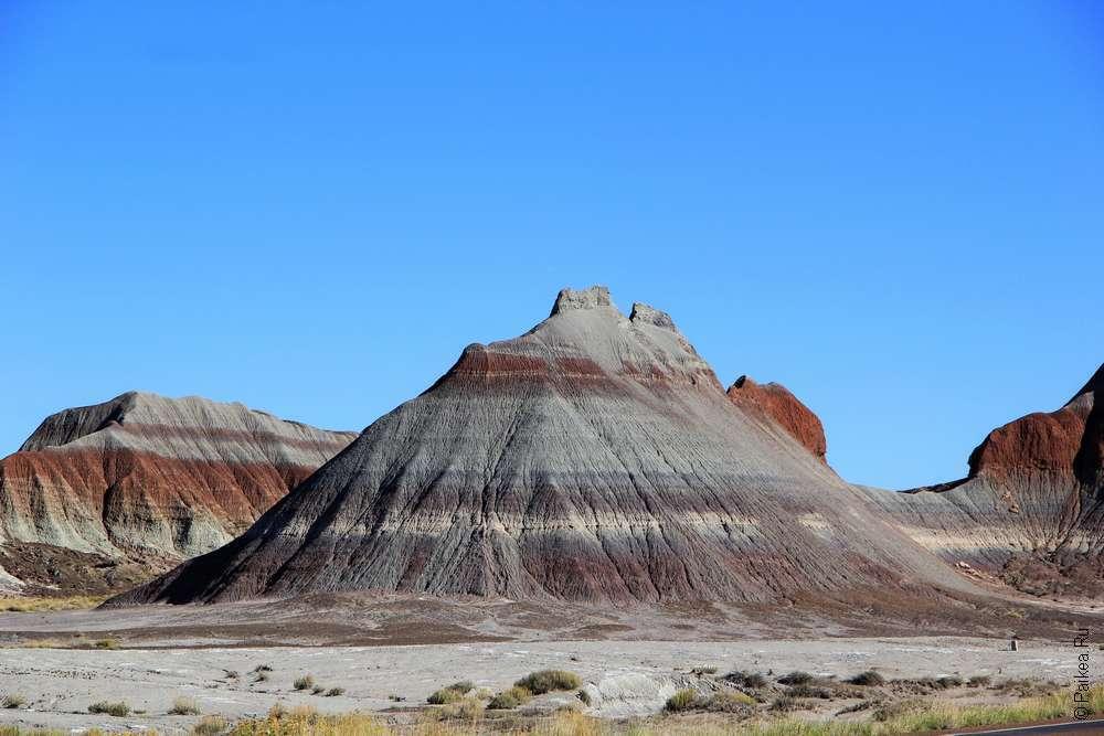 Фото парка Петрифайд Форест, Аризона, США