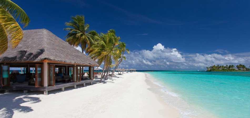 Мальдивы алкоголь в отеле