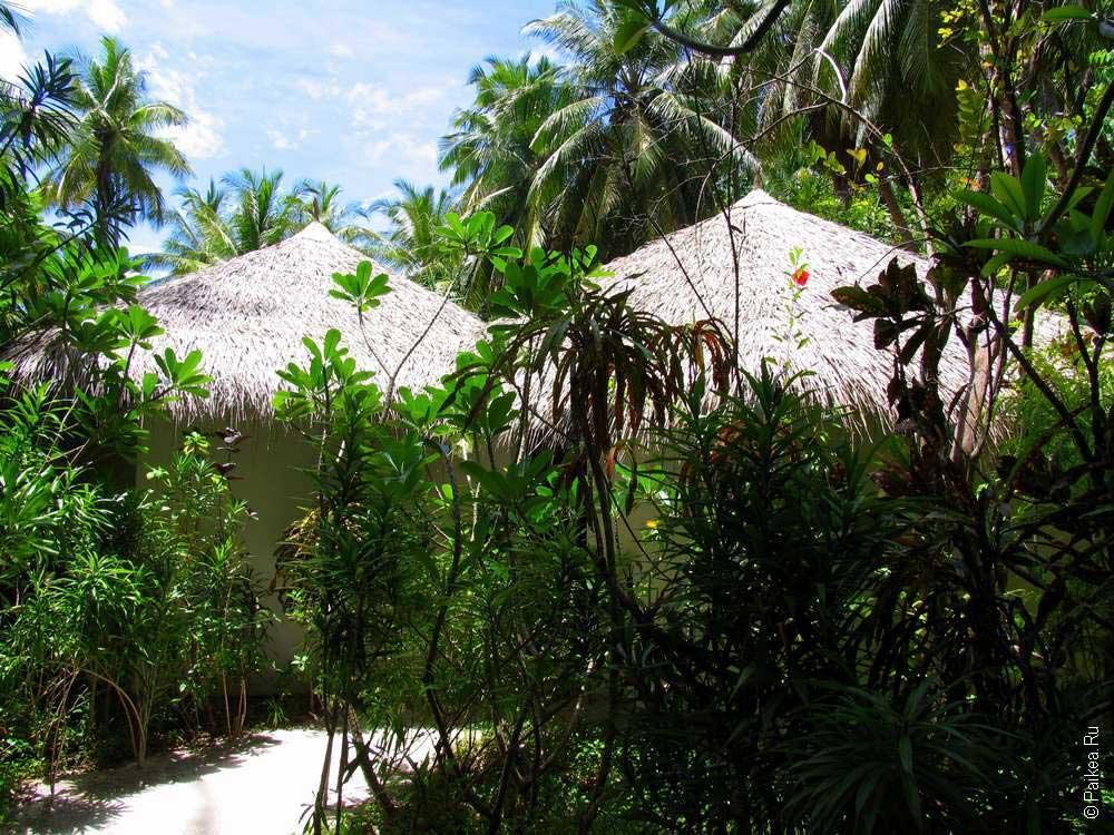 Мальдивы туризм