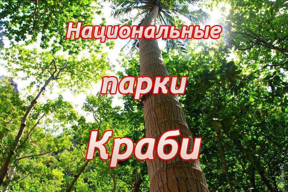 Краби природа