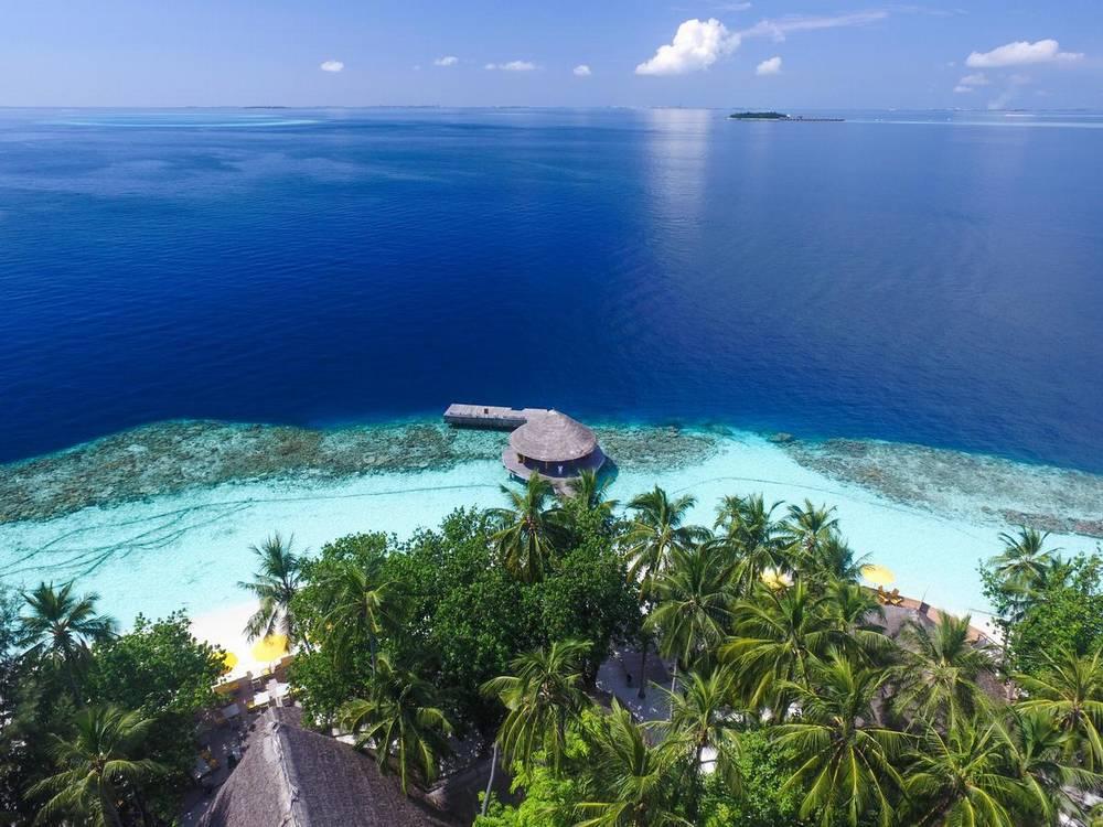 Мальдивы отель с домашним рифом angsana ihuru