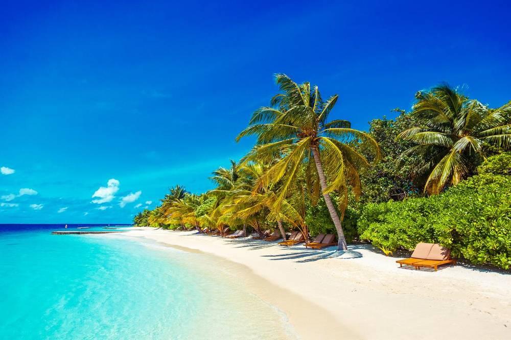 Мальдивы отели с домашним рифом лилу бич