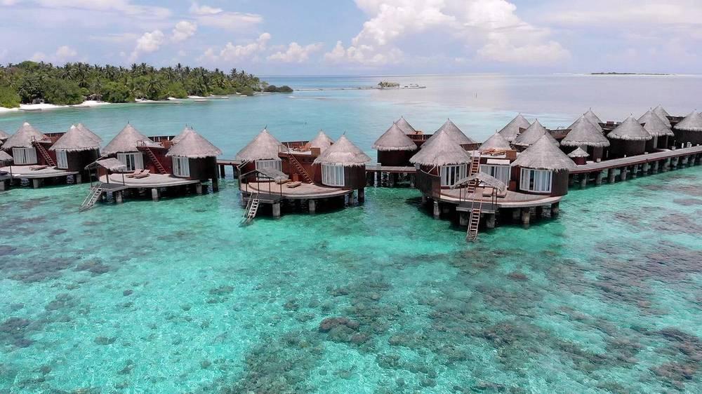 Мальдивы отели с домашним рифом ника