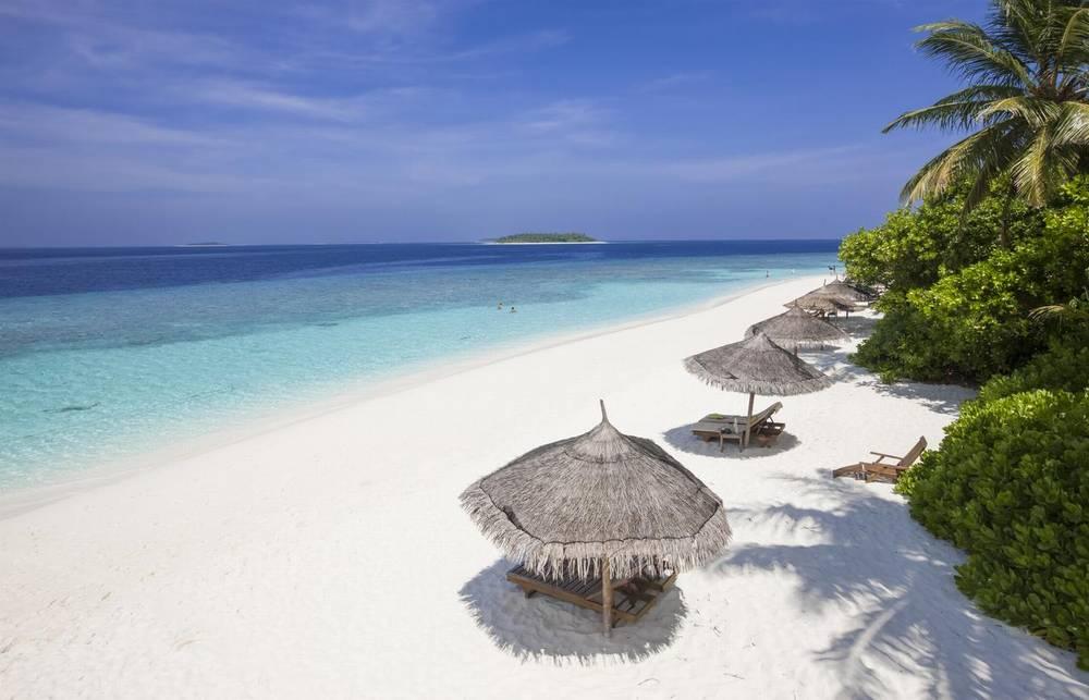 Мальдивы отель с домашним рифом reethi beach