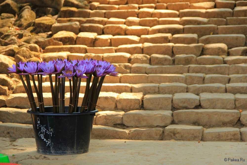 мьянма фото