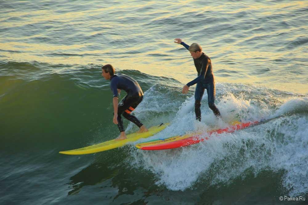 серфингисты в калифорнии