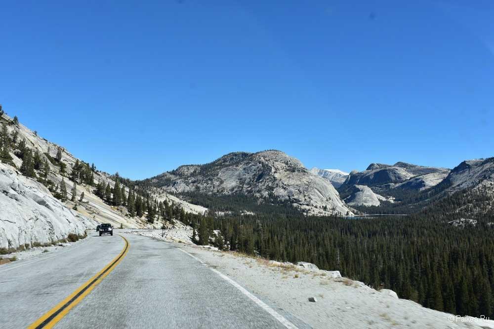 дорога в парке йосемити
