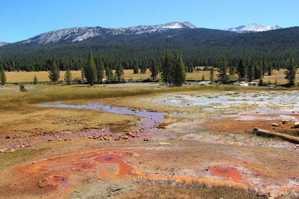 минеральные источники в парке йосемити