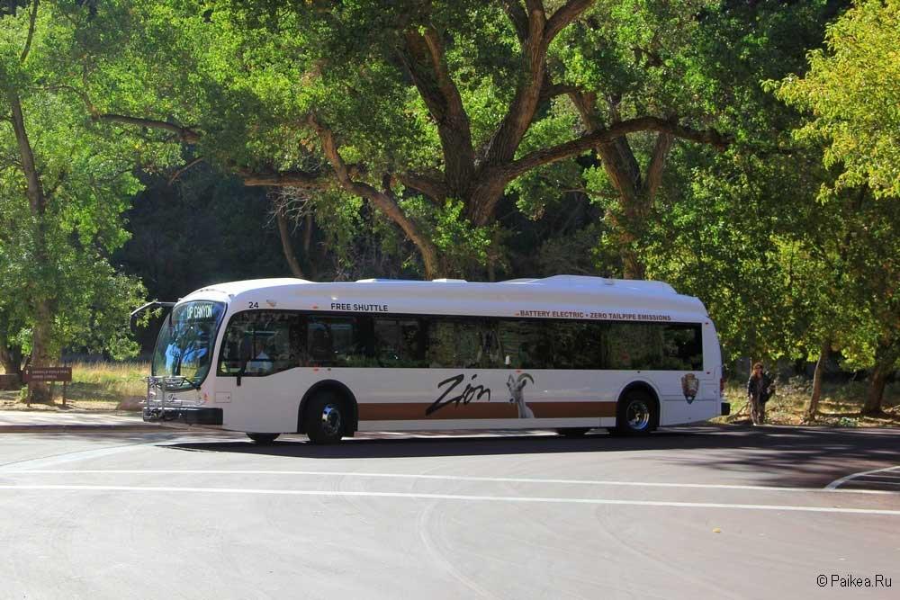 зайон автобус
