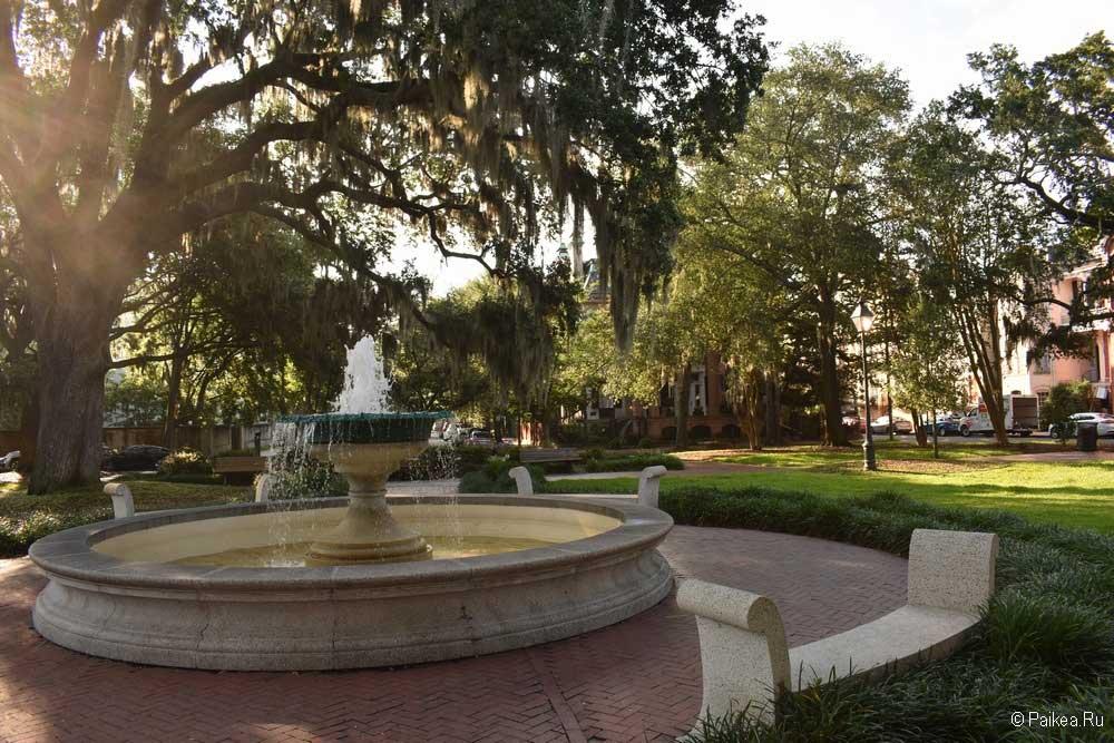 саванна фонтан